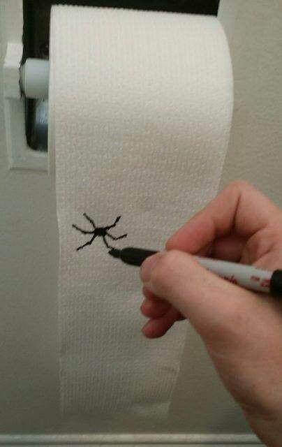 Easy DIY Halloween Bathroom Decor draw bugs on toilet paper