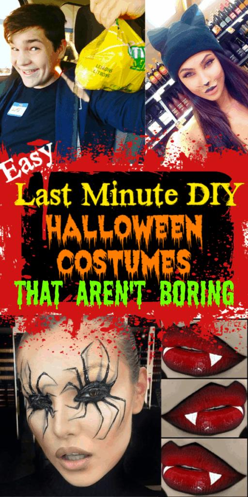 Easy DIY Last Minute Halloween Costumes, Vampire, Cat, Unicorn, Maleficent, Punny, Spider