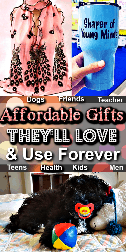 The Ultimate List of Gift Ideas For Every Budget They'll Love and Use Forever / Teachers gifts / Boyfriend Gifts / Christmas Gifts / Budget / DIY Gifts / Men / Friends / Co workers / Neighbors / Kids / Health Conscious / Beauty Lover / College Students / Father / Mother / Anniversary / Grandparents / Pets / Dogs