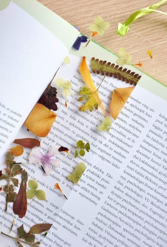 DIY Pressed flower bookmark Kids can help make for Mothers Day. A great gift idea.