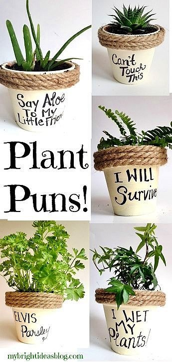 Easy DIY Plant Pun Sharpie Flower Pot Mothers Day craft kids can make. A great last minute rustic gift idea you an do in 15 minutes for Mom's, GrandMother, or Grauntie. On a budget idea.