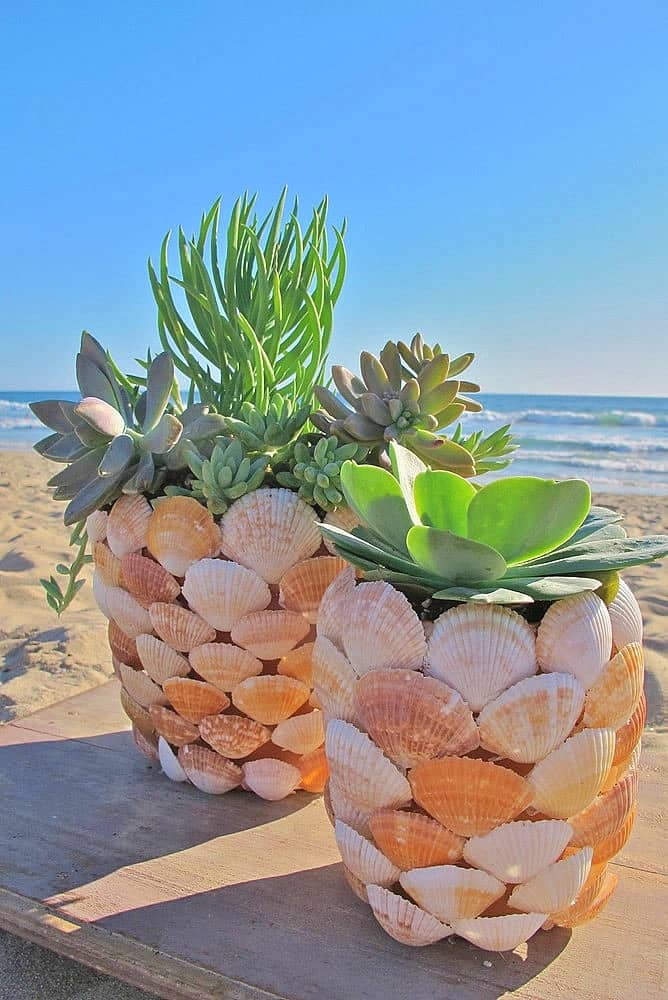 Easy DIY Seashell Flower Pot Mothers Day crafts kids can make. A great Summer gift idea you an do for Mom's, GrandMother, or Grauntie on a budget.