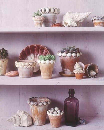 Easy DIY Mother's Day gift Seashell pots craft