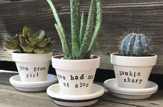 Easy DIY Plant Pun Sharpie Flower Pot Idea Kids can make for Mothers Day. A great last minute gift idea you an do in 15 minutes for Mom's, GrandMother, or Grauntie. On a budget idea.